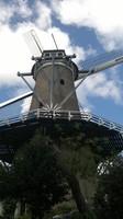 Mulino ad Alkmaar