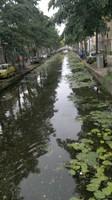 Un canaale a Delft